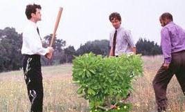 sayings justmy2cents bush