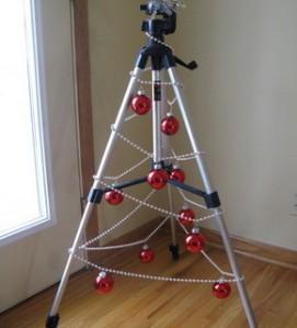 tripod tree