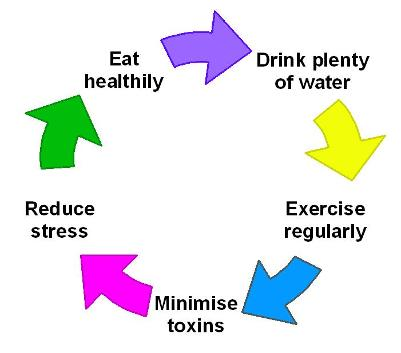 exhealthyliving